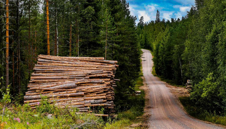 Keski-Suomen soratiet